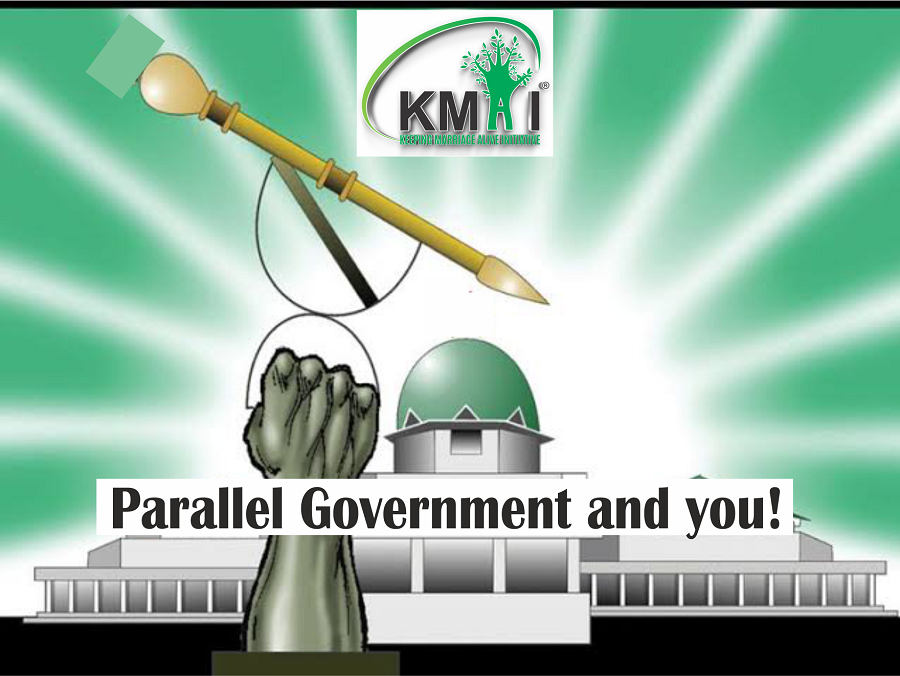 Parallel Government and you